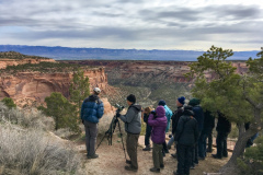 Rockjumper's 2019 Colorado birding tour group birding the top of a canyon at Colorado National Monument