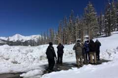 Rockjumper's 2019 Colorado birding tour group in the Rocky Mountains searching for American Three-toed Woodpecker