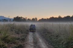 Rockjumper's 2019 India birding tour group exploring Jim Corbett National Park in the early morning