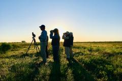 Rockjumper's 2019 Texas birding tour group scanning the Texas coastal plains
