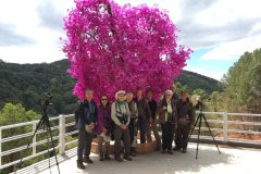 Rockjumper's 2020 Vietnam birding tour group take a photo by a beautiful flowering tree in Ta Nung Valley
