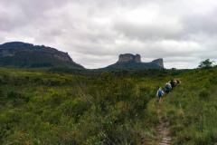 Rockjumper's 2019 Brazil North-east Mega birding tour group hiking near Pailnacio