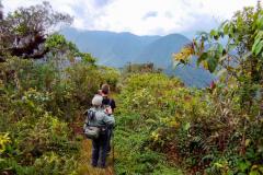 Rockjumper's 2020 Colombia birding tour group hiking the ridge trail of Las Tangaras Reserve