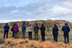 Rockjumper's 2019 Colorado birding tour group birding at Colorado National Monument