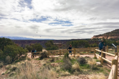 Rockjumper's 2019 Colorado birding tour group on the Colorado National Monument walk