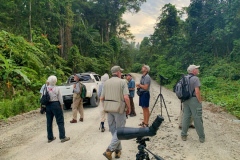 Rockjumper's 2019 Remote West Papuan Islands birding tour group scanning the treetops