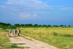 One of Rockjumper's Uganda birding tour groups scanning grasslands