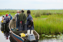Rockjumper's Uganda birding tour group on the water in Mabamba looking at a Shoebill