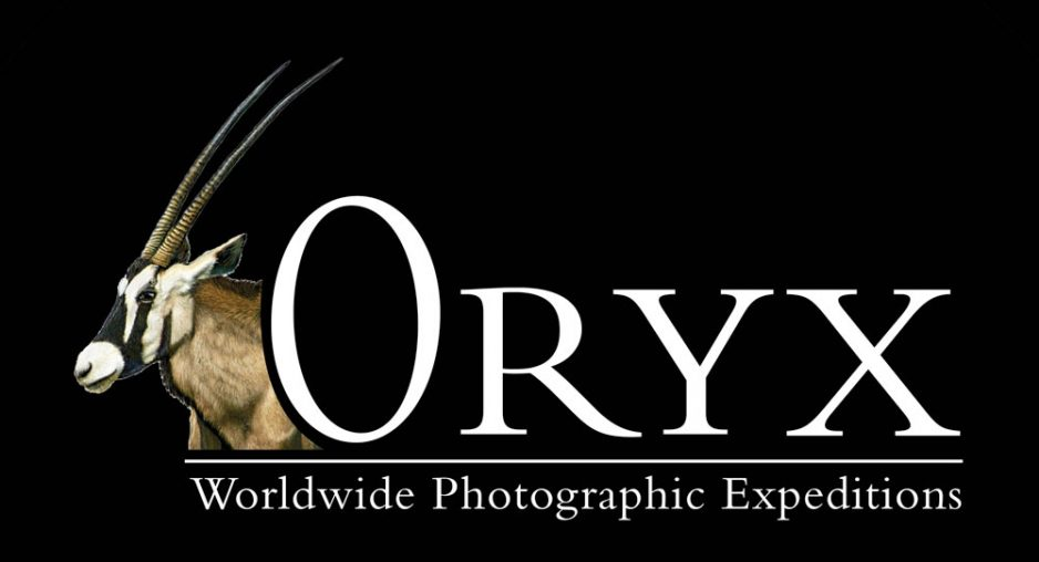 Oryx - Worldwide Photographic Expeditions Launch