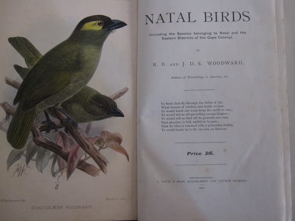 """The inner cover of """"Natal Birds"""" by the Woodward brothers. Published in 1899, this was the first book on the region's birds and the illustration shows Woodward's Barbet, a species discovered by the brothers in Ngoye Forest"""