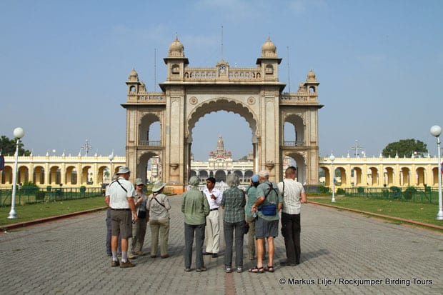 Cultural attractions are an added bonus on some tours.