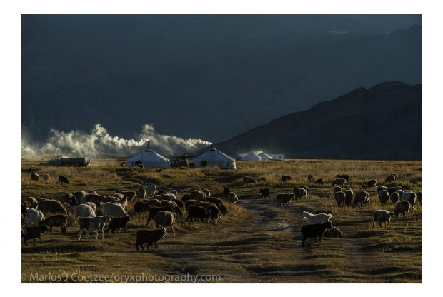 The vast open steppes of Mongolia provide amazing scenery. (Photo © Marius Coetzee)