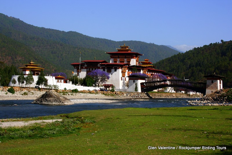 The huge Punakha Dzong situated along the Puna Tsang Chu River