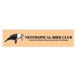affiliation-neotropical-bird-club