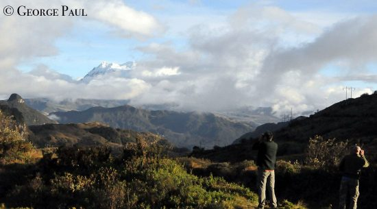 Birding the High Andes