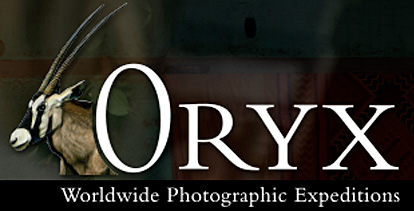 Oryx Photographic Expeditions