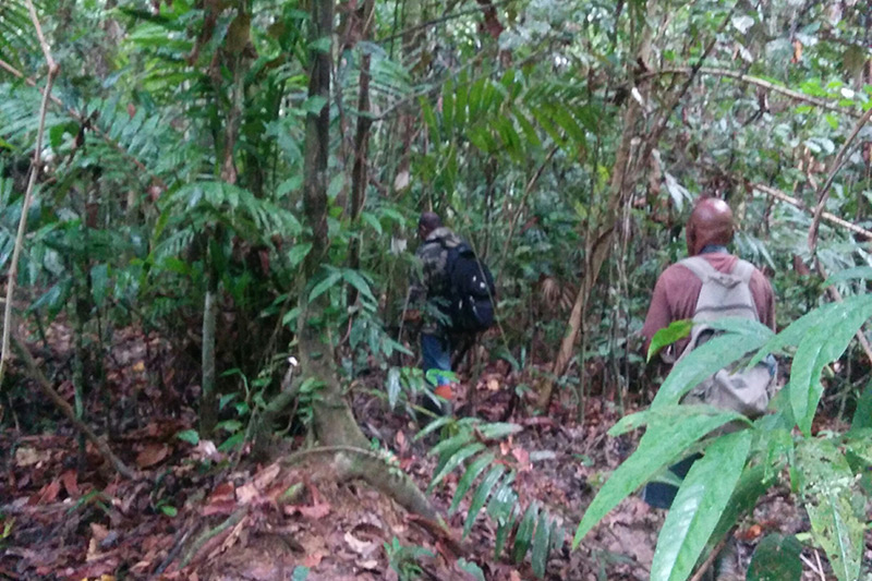 Off trail in Nimbokrang with local guides, Dante and Alex