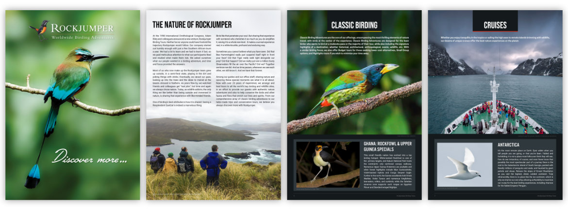 Rockjumper In Focus Brochure