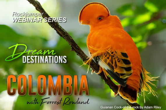 Dream Destinations Webinar: Colombia with Forrest Rowland