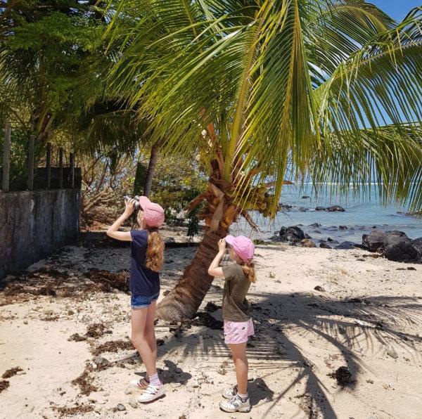 Niki's Daughters Birding on a Mauritian Beach