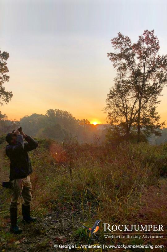 Sunrise Birder in Philly